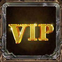 战队VIP