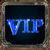 队员VIP